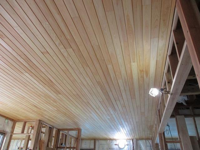 天井を張ります